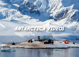 Antarctica Videos by Paul Skidmore