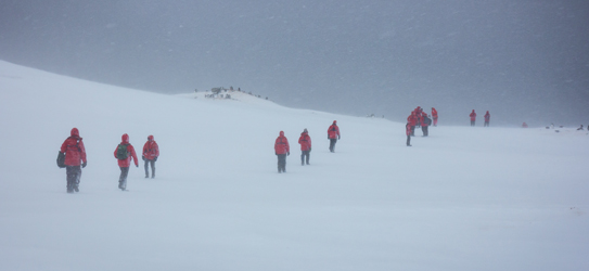 My fellow travellers battle against the harsh winds of Antarctica