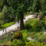 Paxton's Rock Garden - A tribute to the Alps