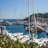 Monaco harbour with all the luxary yachts