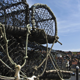 Crab pots in the harbour