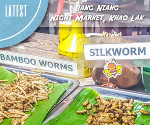 Exploring the Bang Niang Night Market, Khao Lak