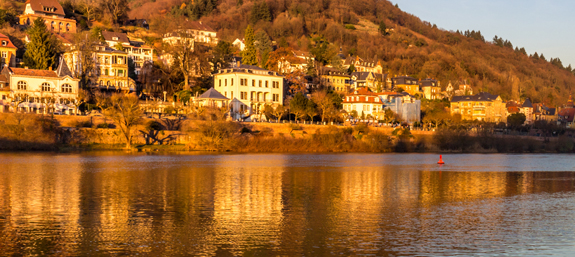 Houses and hotels on the opposite side of the Neckar river