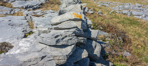 Handmade stone walls cover the Inishmore landscape